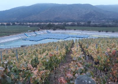 Winery – Self consumption pumping (PPA) – Large Winery (Chile)